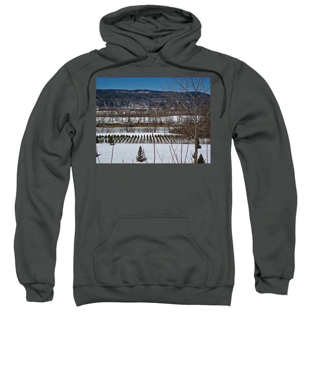 Christmas Trees Sweatshirt featuring the photograph Tree Farm by MTBobbins Photography