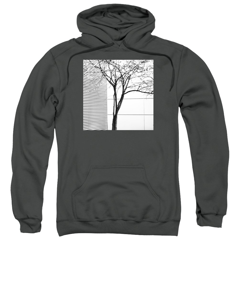 Art Sweatshirt featuring the photograph Tree Lines by Darryl Dalton