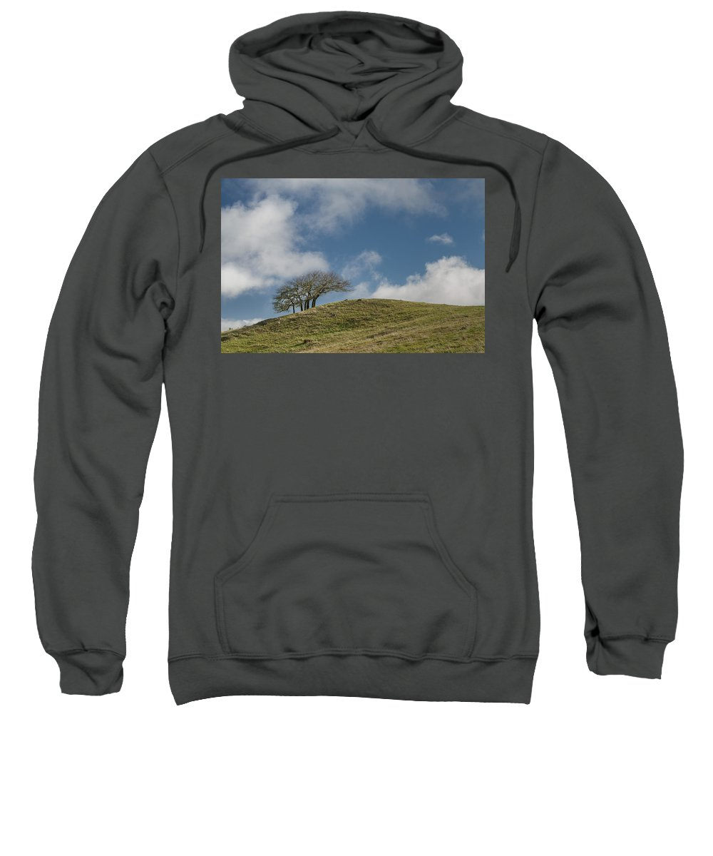 Green Sweatshirt featuring the photograph Tree On A Hill by Greg Nyquist