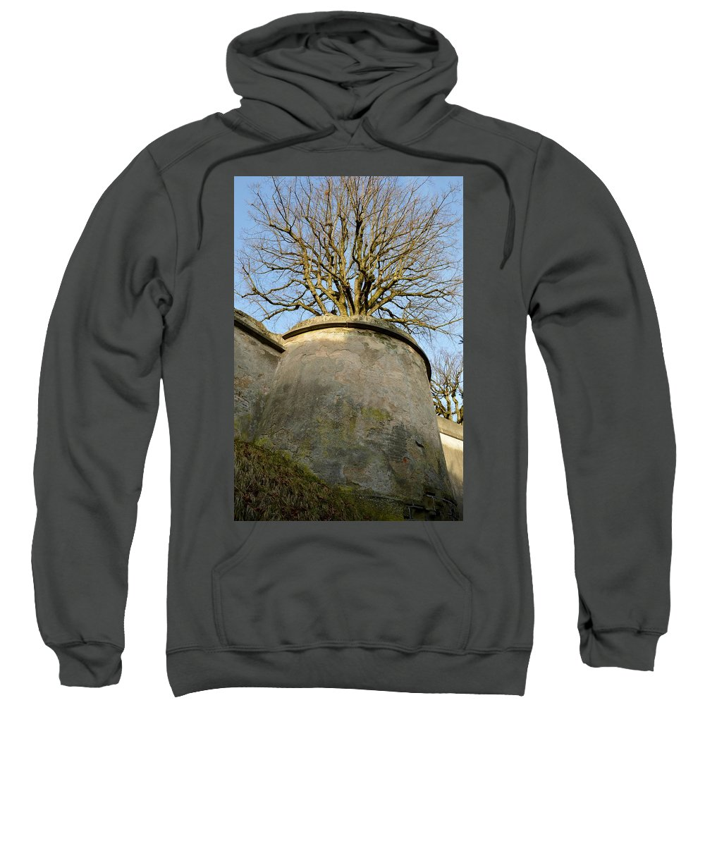 Nature Sweatshirt featuring the photograph Tree On The Wall by Felicia Tica