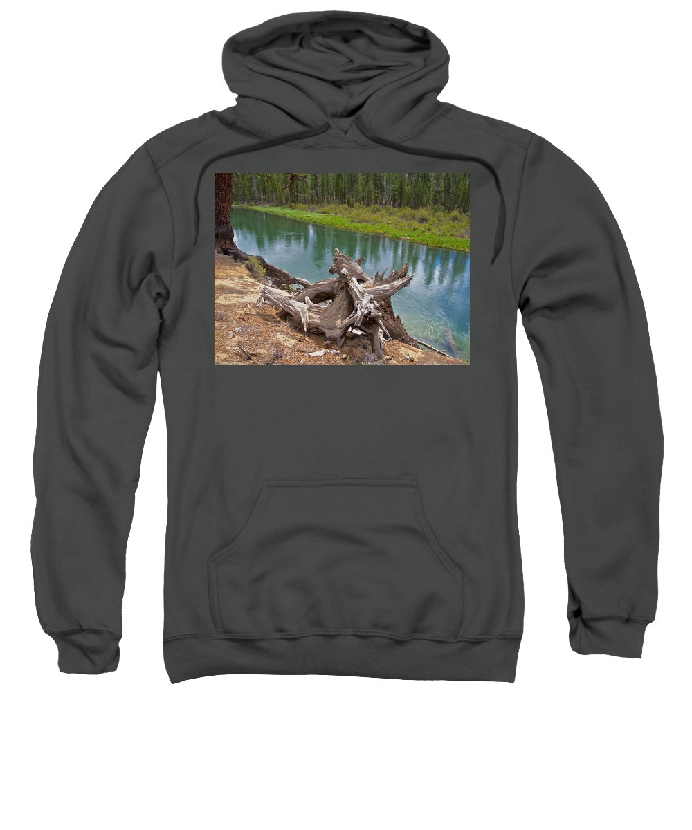 Tree Stump Sweatshirt featuring the photograph Tree Stump In Des Chutes Nf-or by Ruth Hager