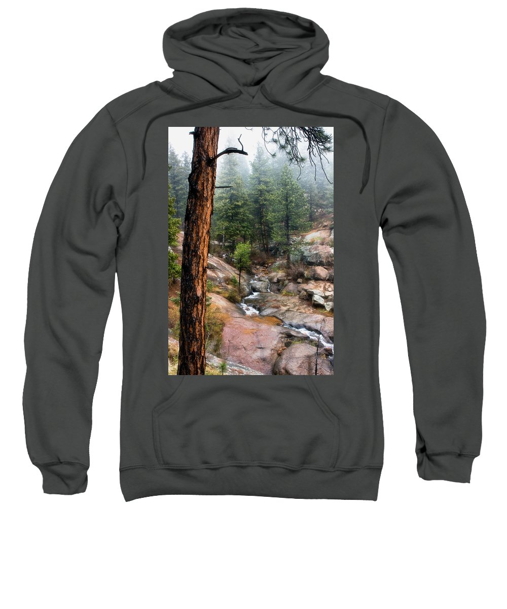 Cheyenne Canon Sweatshirt featuring the photograph Trees In The Fog by Ronda Kimbrow