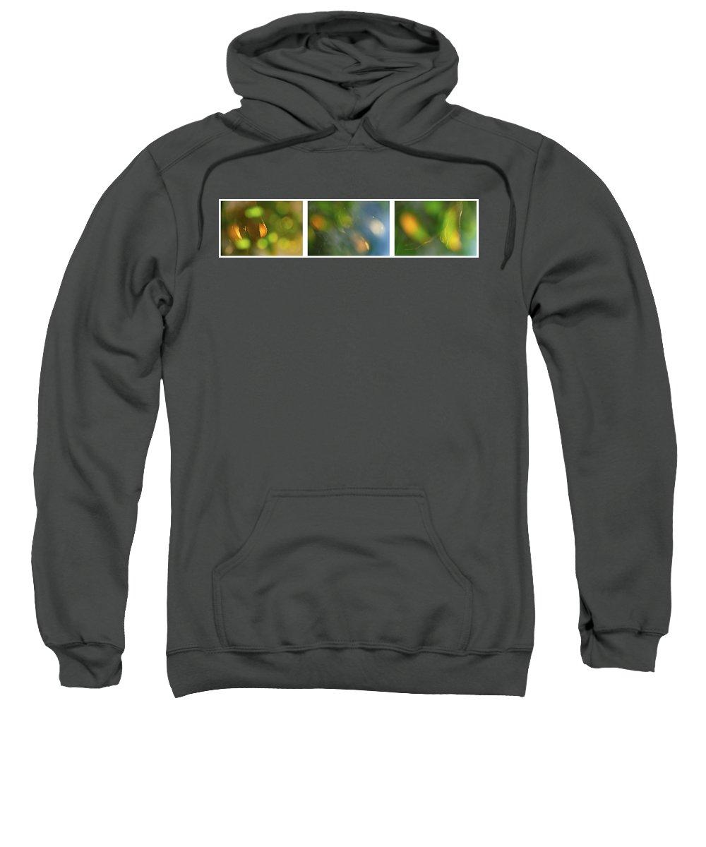 Triptico Hojas Sweatshirt featuring the photograph Triptico Hojas Luminosas by Guido Montanes Castillo