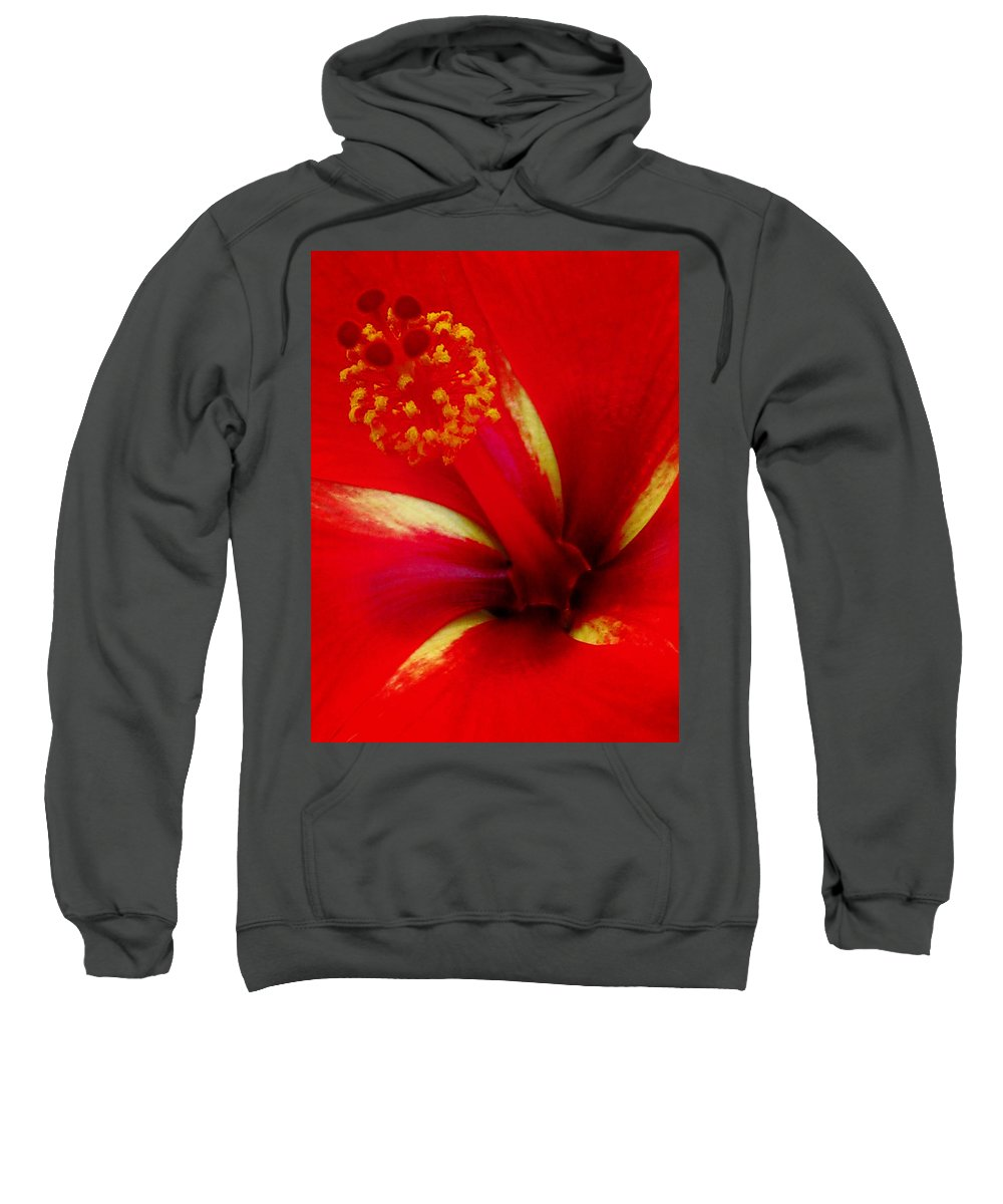 Hibiscus Sweatshirt featuring the photograph Tropical Hibiscus - Starry Wind 03a by Pamela Critchlow