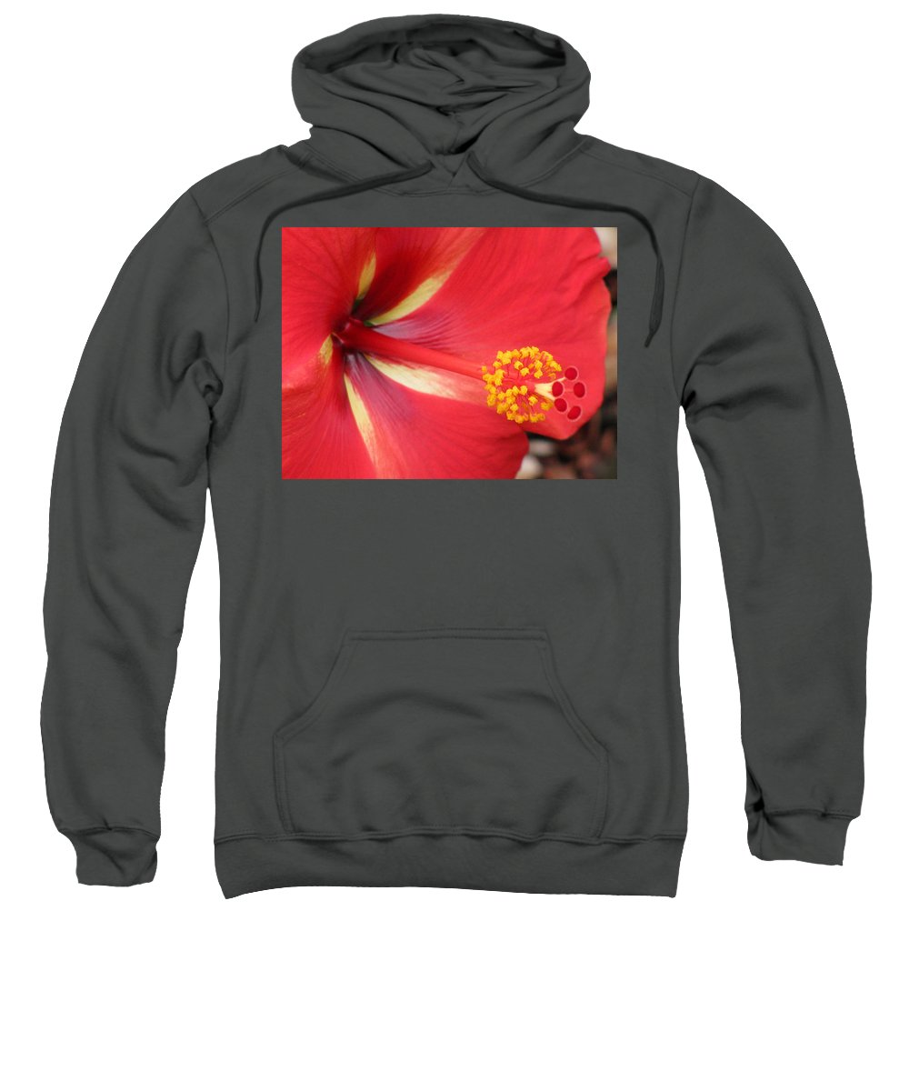 Hibiscus Sweatshirt featuring the photograph Tropical Hibiscus - Starry Wind 04 by Pamela Critchlow