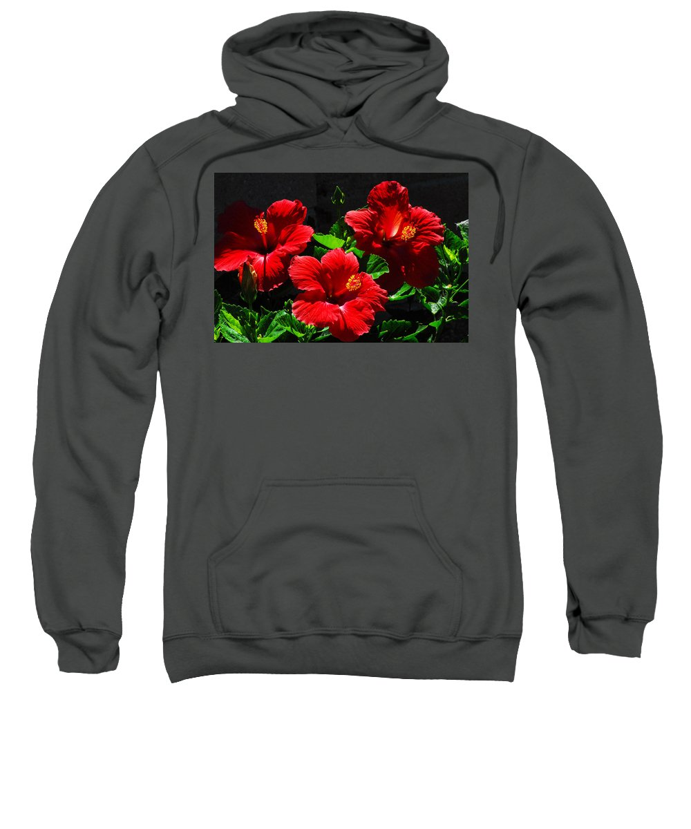 Tropical Hibiscus Sweatshirt featuring the photograph Tropical Trio by Lynn Bauer