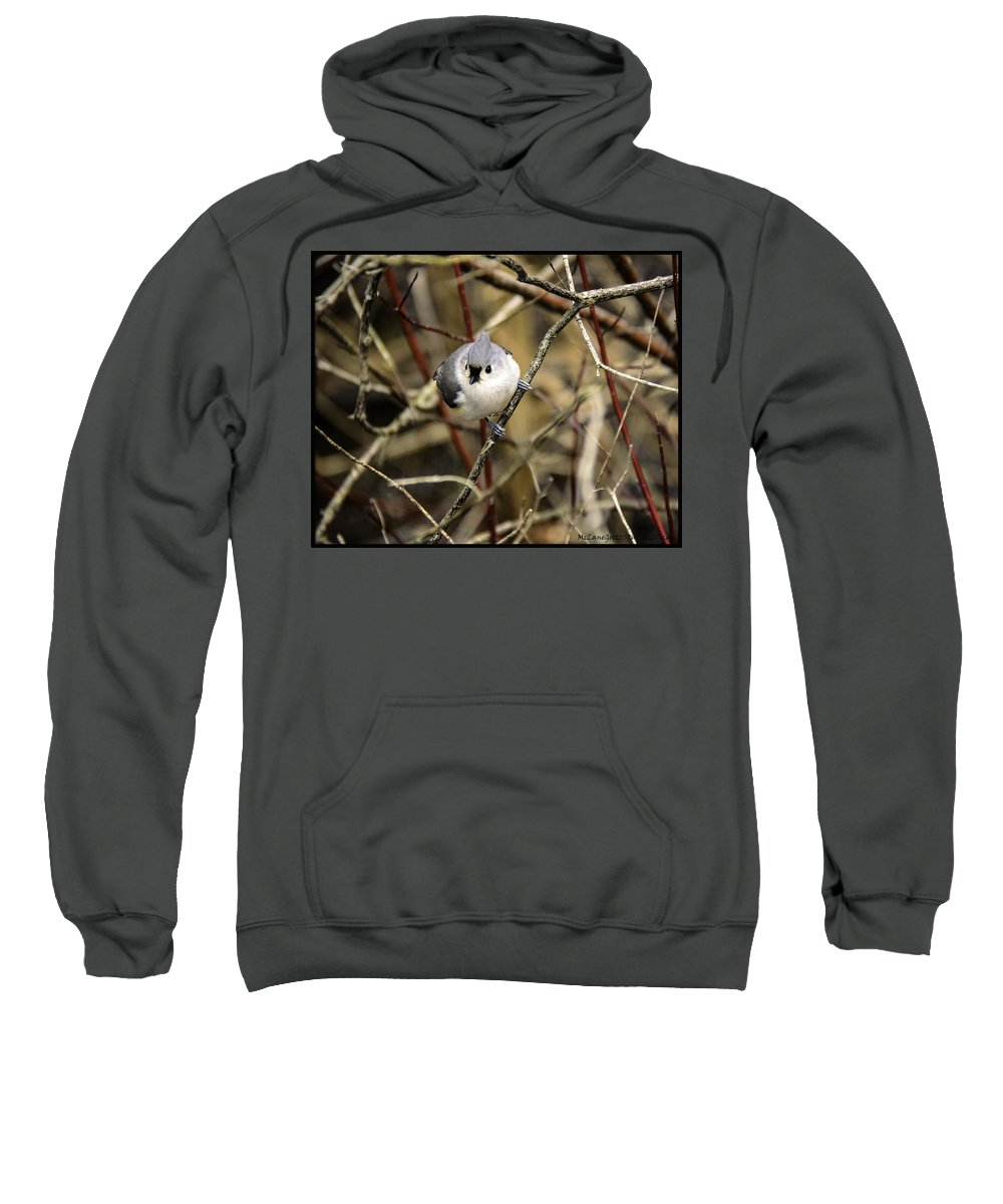 Tufted Titmouse Sweatshirt featuring the photograph Tufted Titmouse On The Watch by LeeAnn McLaneGoetz McLaneGoetzStudioLLCcom