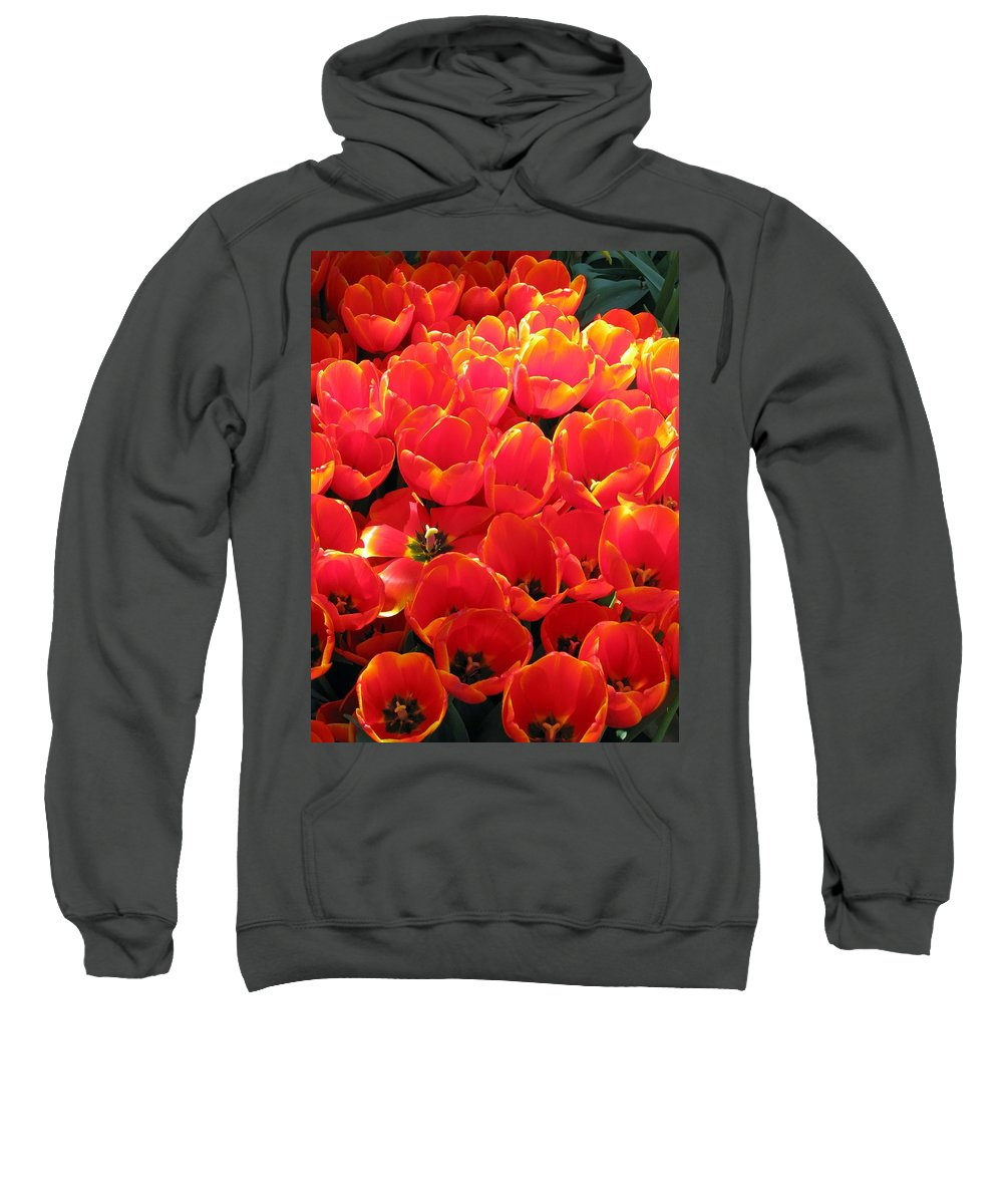 Tulip Sweatshirt featuring the photograph Tulips - Field With Love 28 by Pamela Critchlow