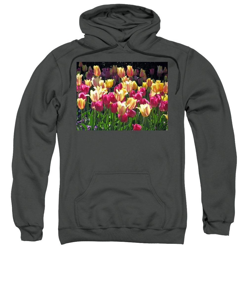 Tulip Sweatshirt featuring the photograph Tulips - Field With Love 35 by Pamela Critchlow