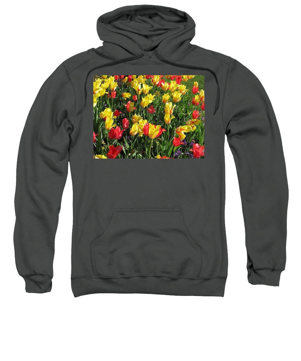 Tulip Sweatshirt featuring the photograph Tulips - Field With Love 49 by Pamela Critchlow