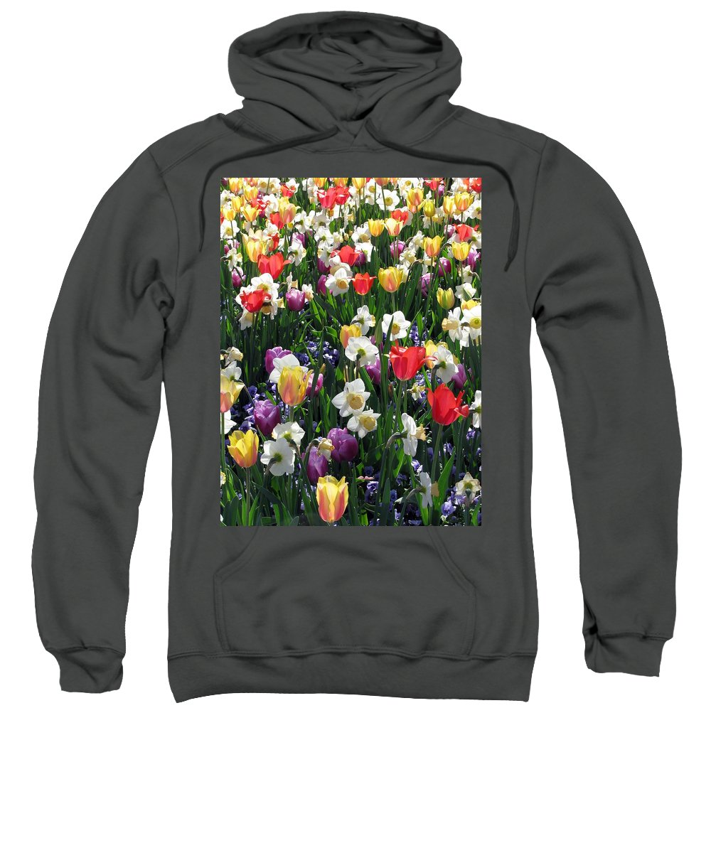 Tulip Sweatshirt featuring the photograph Tulips - Field With Love 58 by Pamela Critchlow