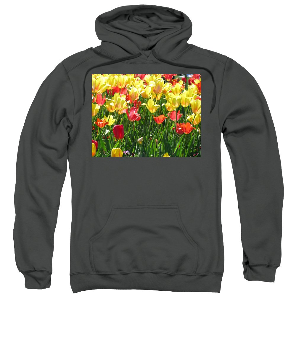Tulip Sweatshirt featuring the photograph Tulips - Field With Love 65 by Pamela Critchlow