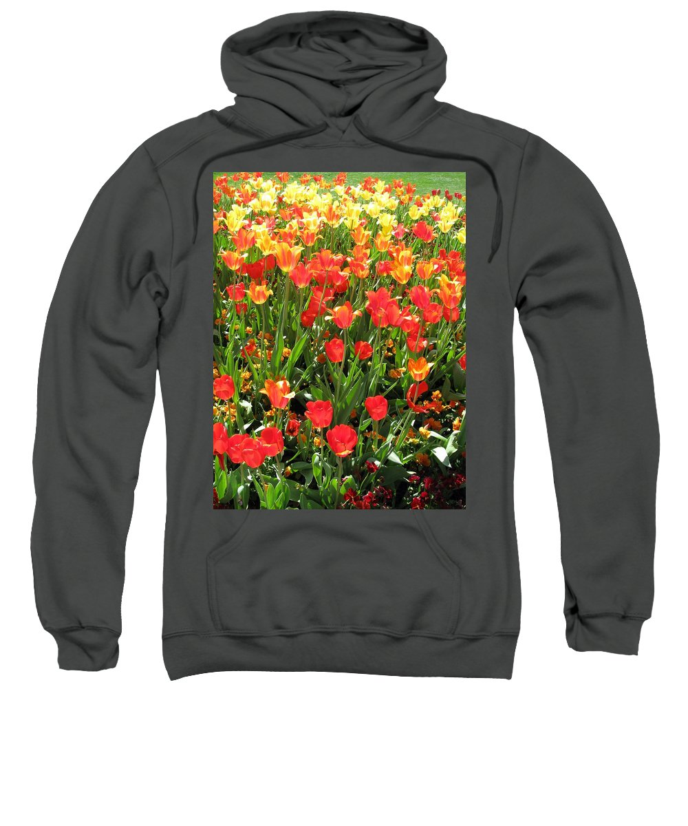 Tulip Sweatshirt featuring the photograph Tulips - Field With Love 68 by Pamela Critchlow