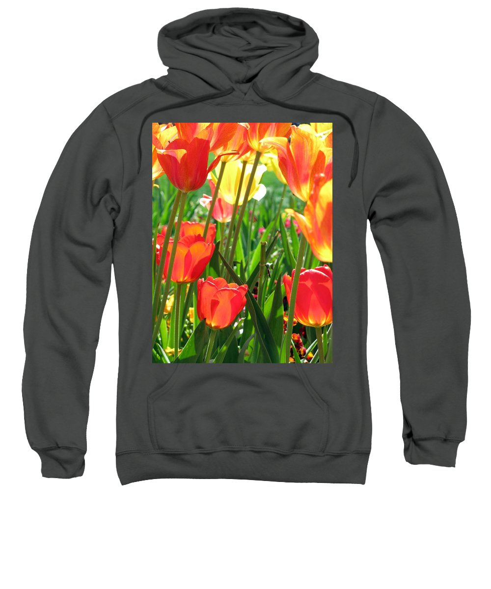 Tulip Sweatshirt featuring the photograph Tulips - Field With Love 69 by Pamela Critchlow
