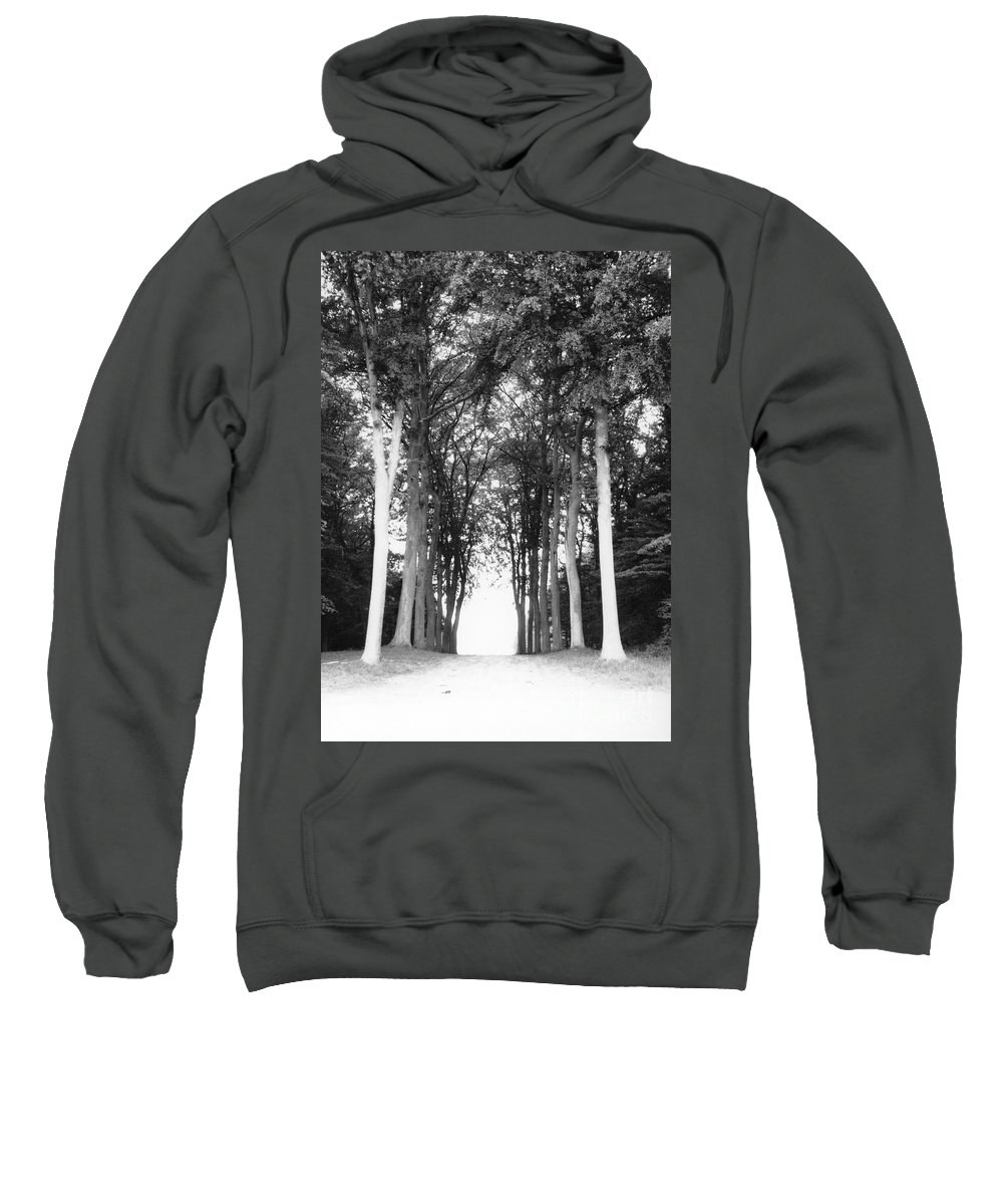 Trees Sweatshirt featuring the photograph Tunnel Of Trees by Christine Jepsen