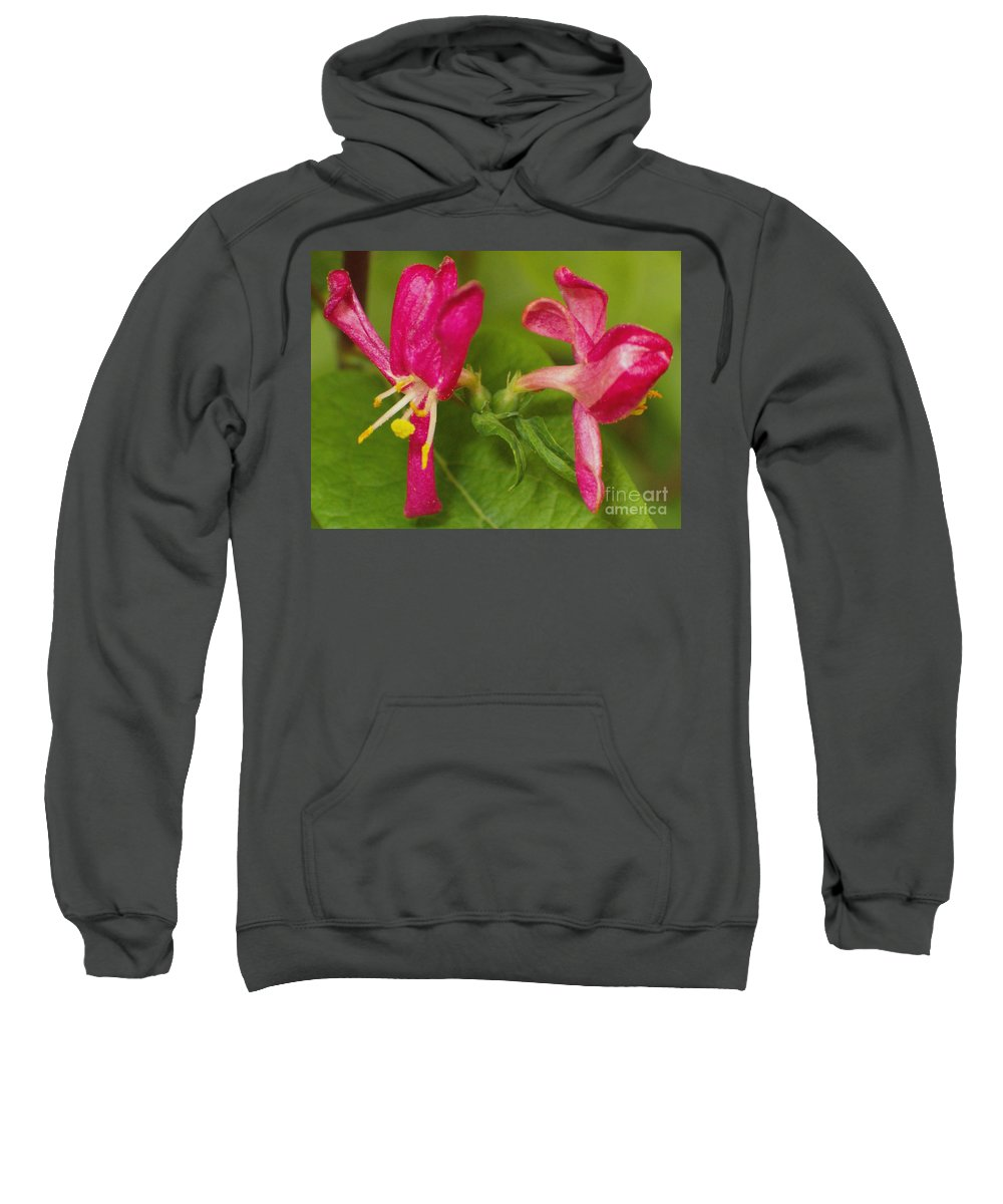Flower Sweatshirt featuring the photograph Twins by Sara Raber
