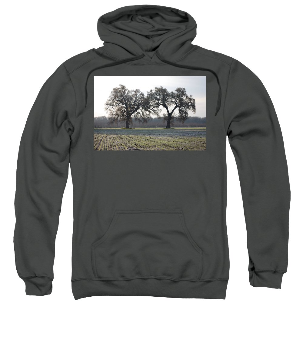 Two Tree Trees Frosty Field Morning Vineyard Vina Ca Sweatshirt featuring the photograph Two Tree Frosty Morning by Holly Blunkall