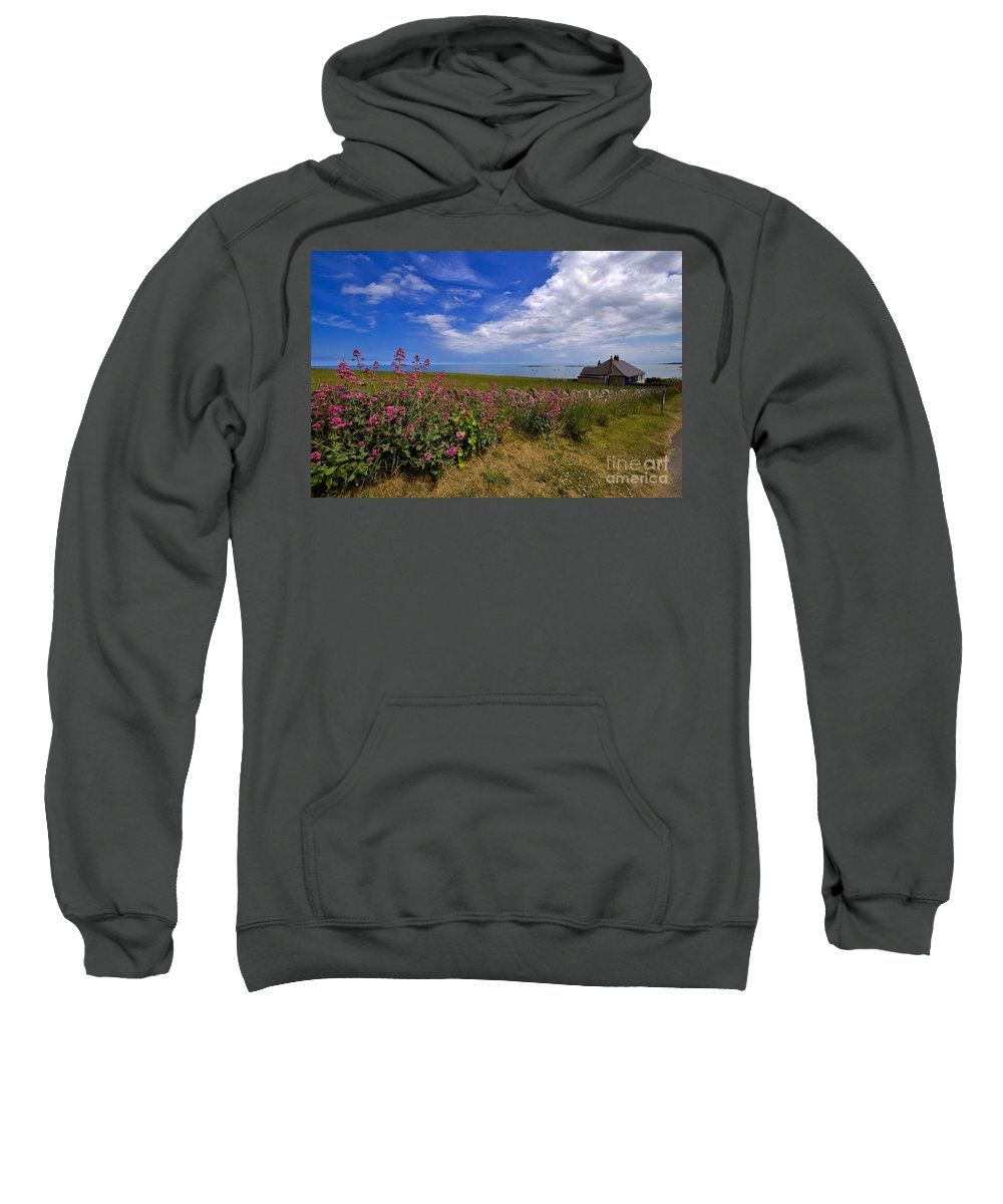 Travel Sweatshirt featuring the photograph Valerian By A Stone Wall On The Northumberland Coast by Louise Heusinkveld
