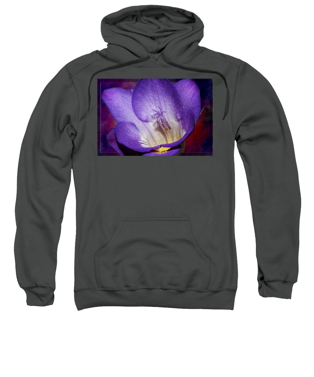 Flower Sweatshirt featuring the photograph Vibrant Purple Flower by Phyllis Denton