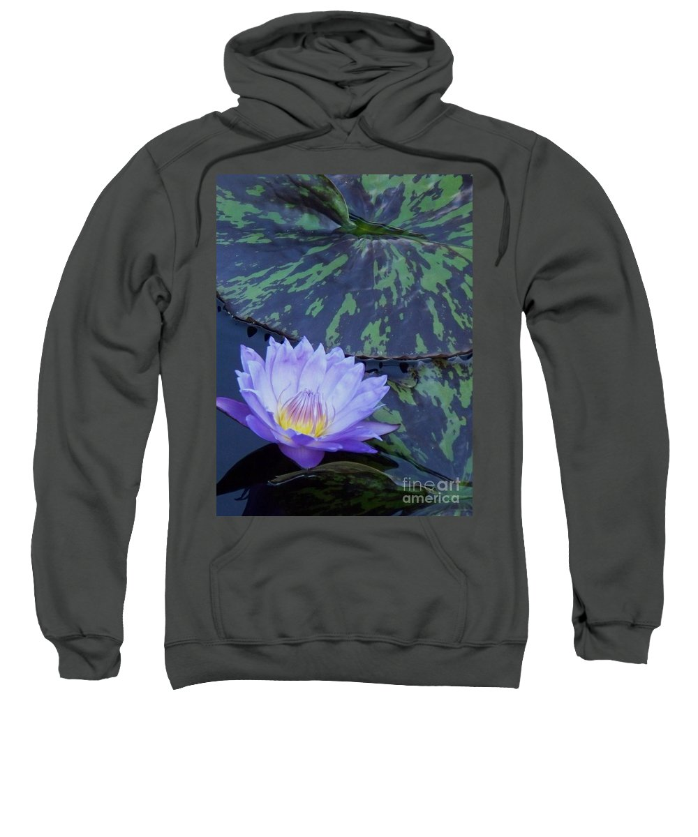 Water Lilies Sweatshirt featuring the photograph Violet Lily by Eric Schiabor