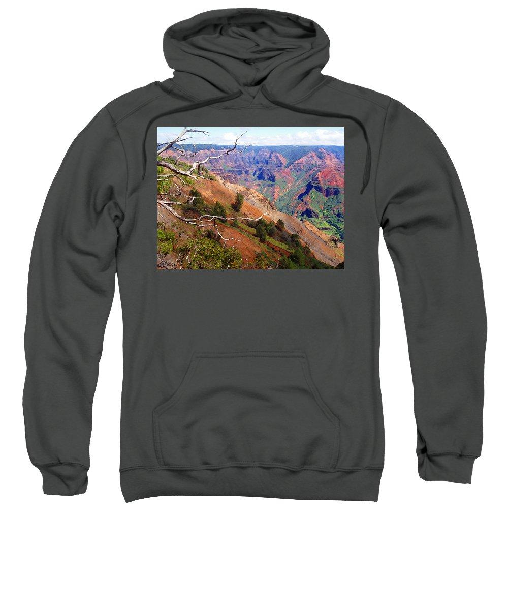 Waimea Canyon Sweatshirt featuring the painting Waimea Canyon 1 by Ellen Henneke