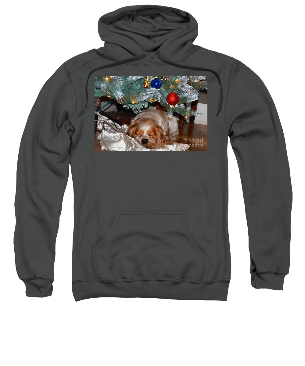 Christmas Sweatshirt featuring the photograph Waiting For Santa by Debbie Portwood
