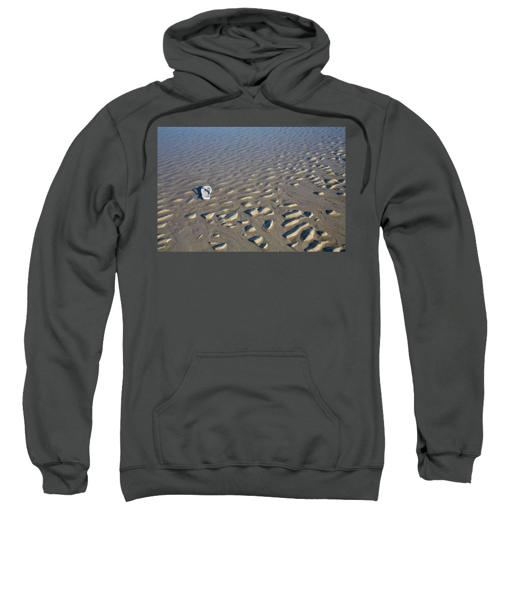 Sandal Sweatshirt featuring the photograph Washed Up On A Florida Beach by Diane Macdonald