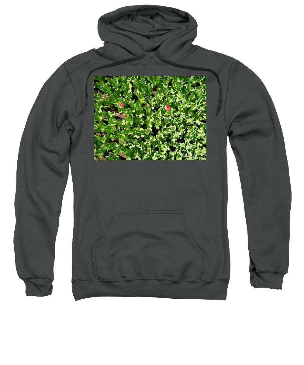 Albany Sweatshirt featuring the photograph Washington Park IIi by Tina Baxter