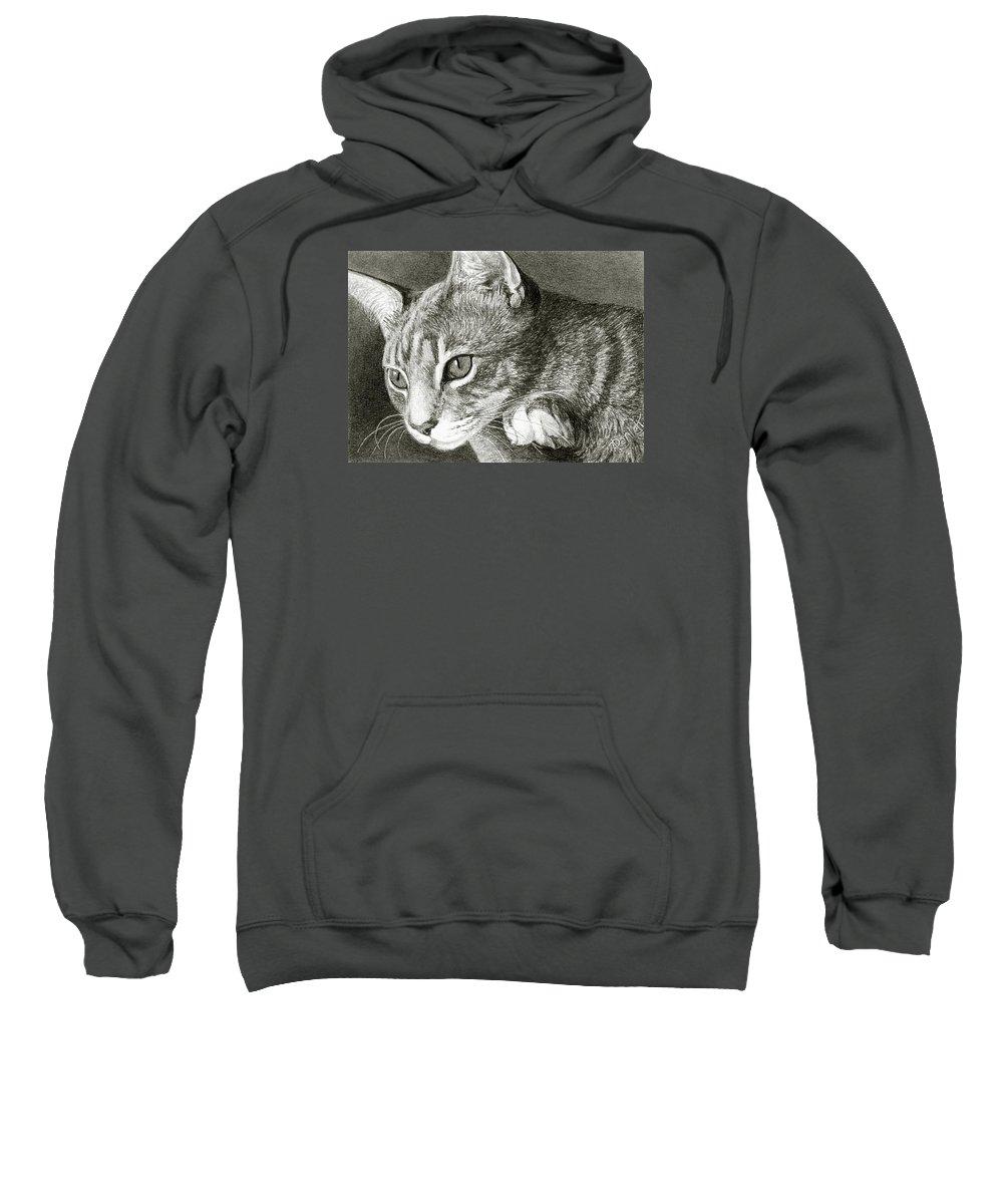 Cat Sweatshirt featuring the drawing Watchful by Ann Ranlett