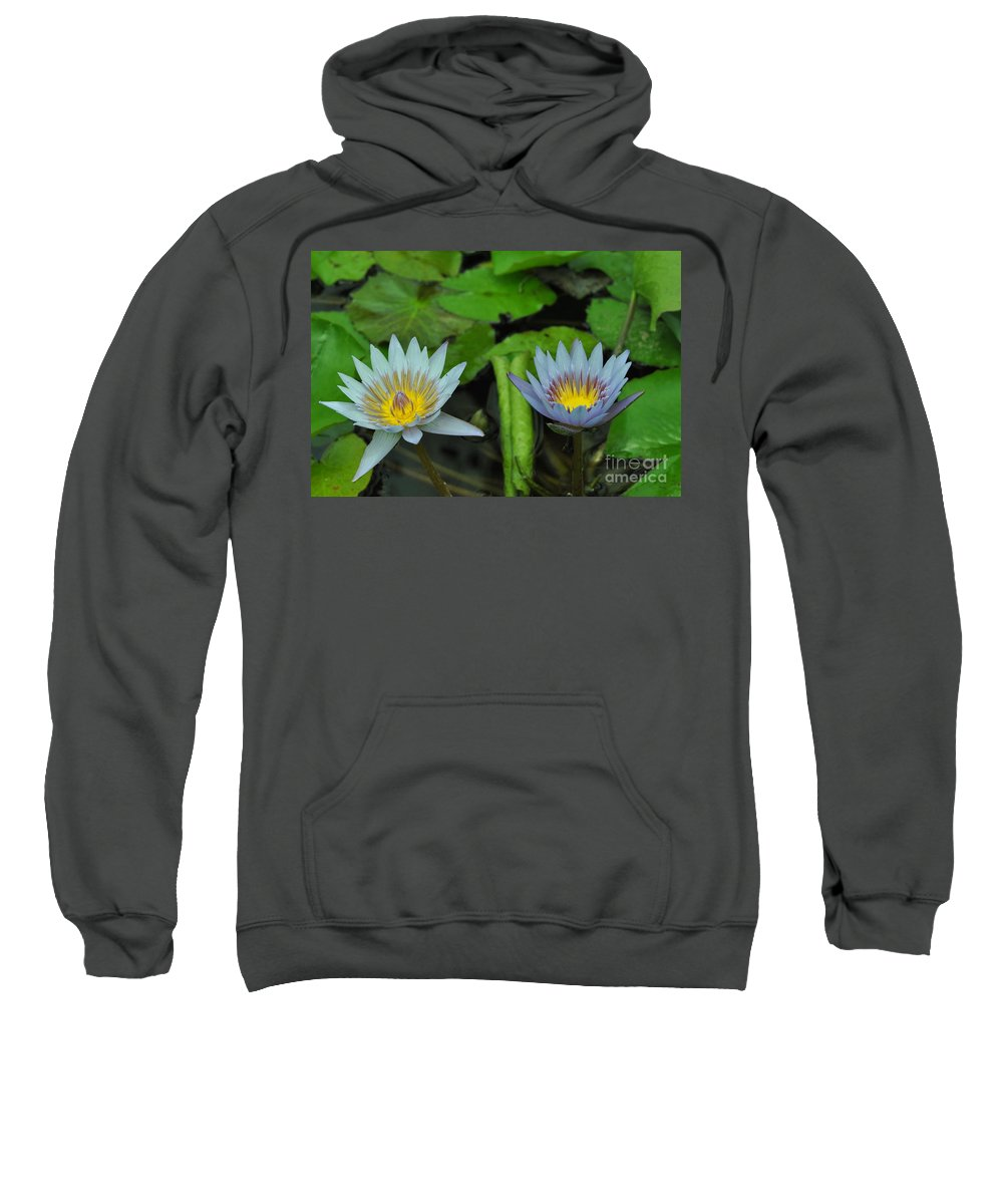 Water Lillies Sweatshirt featuring the photograph Water Lilies 1 by Allen Beatty
