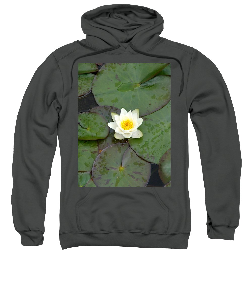 Waterlily Sweatshirt featuring the photograph Water Lily - White by Ian Mcadie