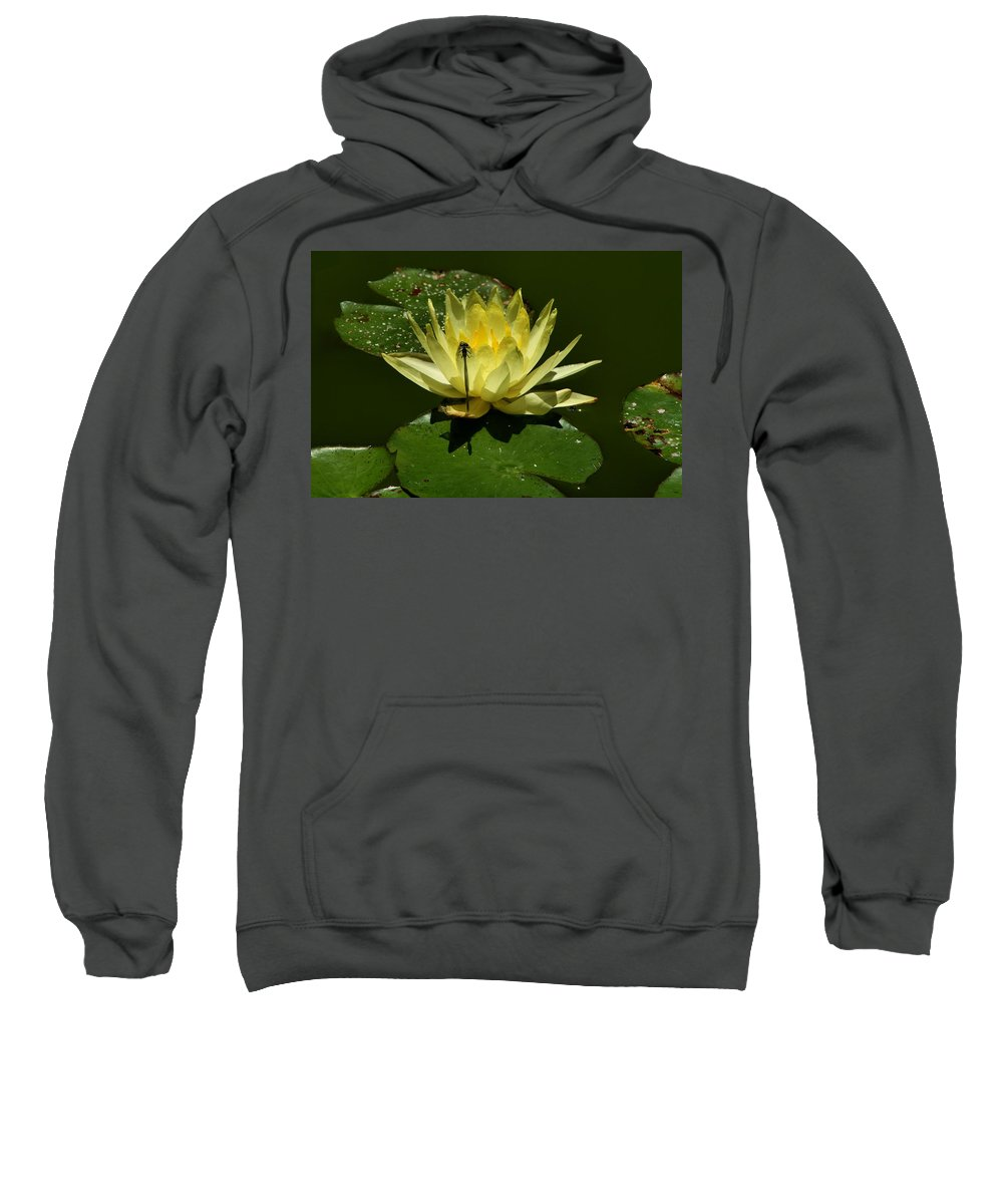 Water Lily Sweatshirt featuring the photograph Water Lily by Michael Gordon