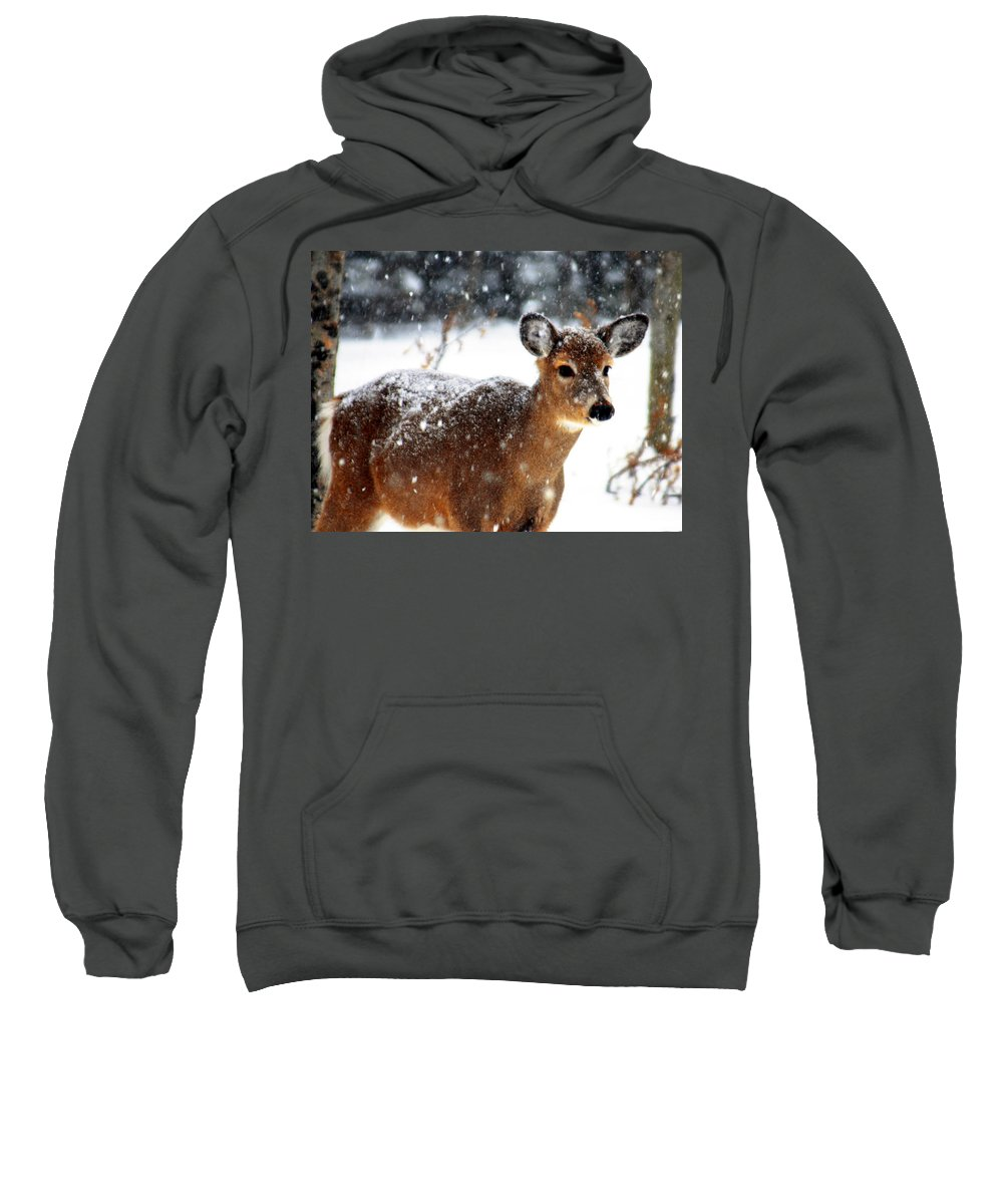 Optical Playground By Mp Ray Sweatshirt featuring the photograph Weathering The Storm by Optical Playground By MP Ray