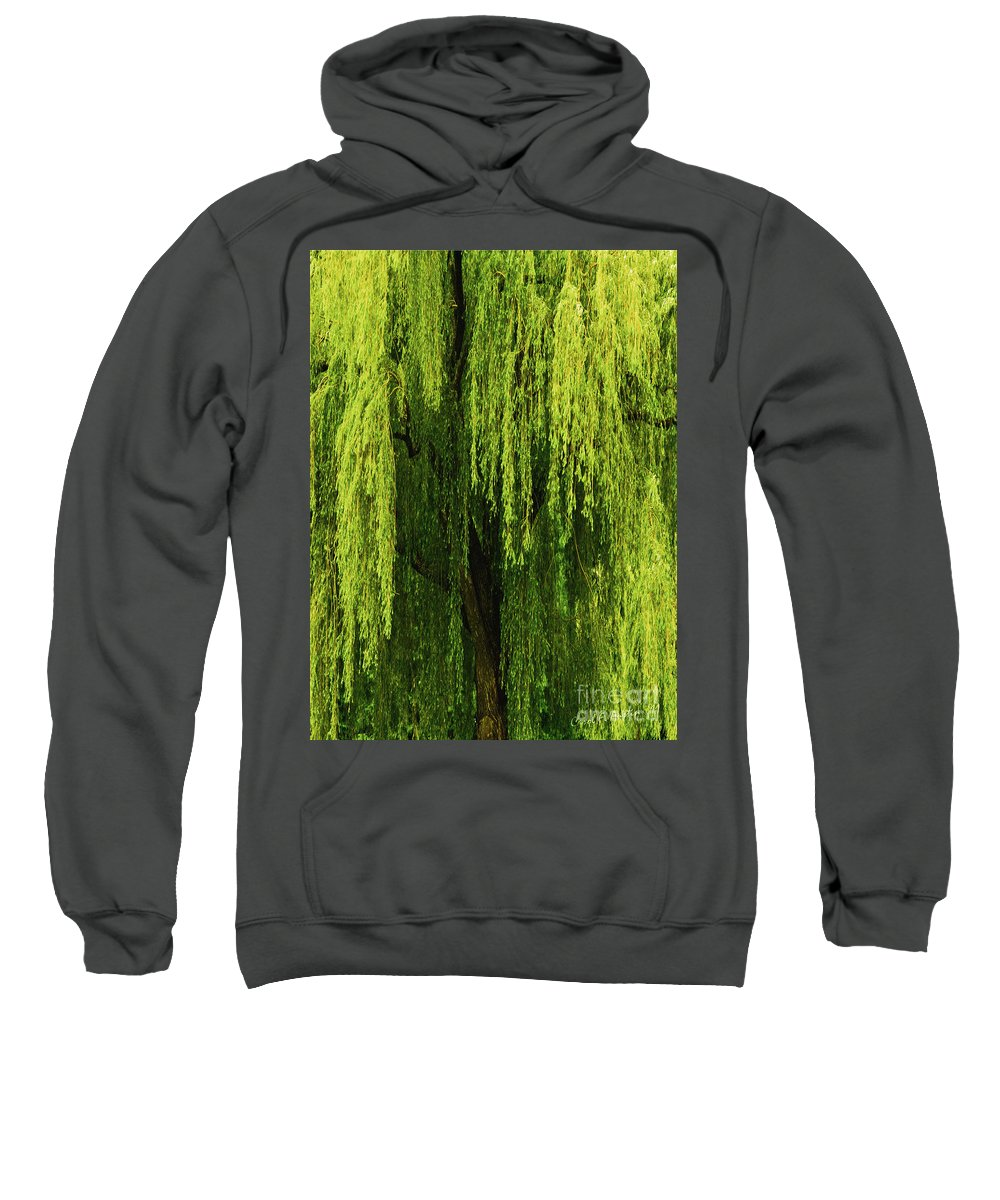 Weeping Willow Sweatshirt featuring the photograph Weeping Willow Tree Enchantment by Carol F Austin