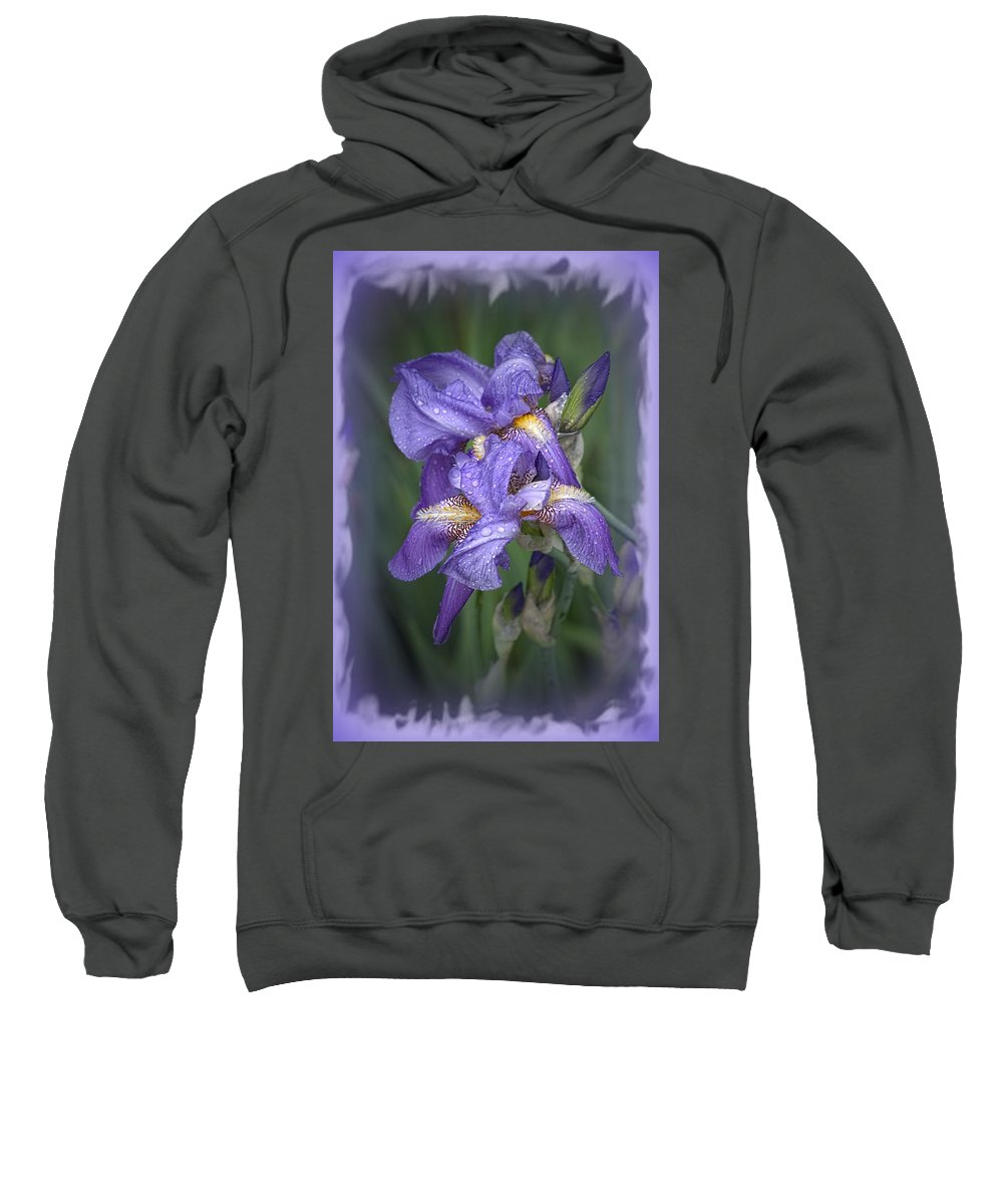Iris Sweatshirt featuring the photograph Wet Purple by Bonfire Photography