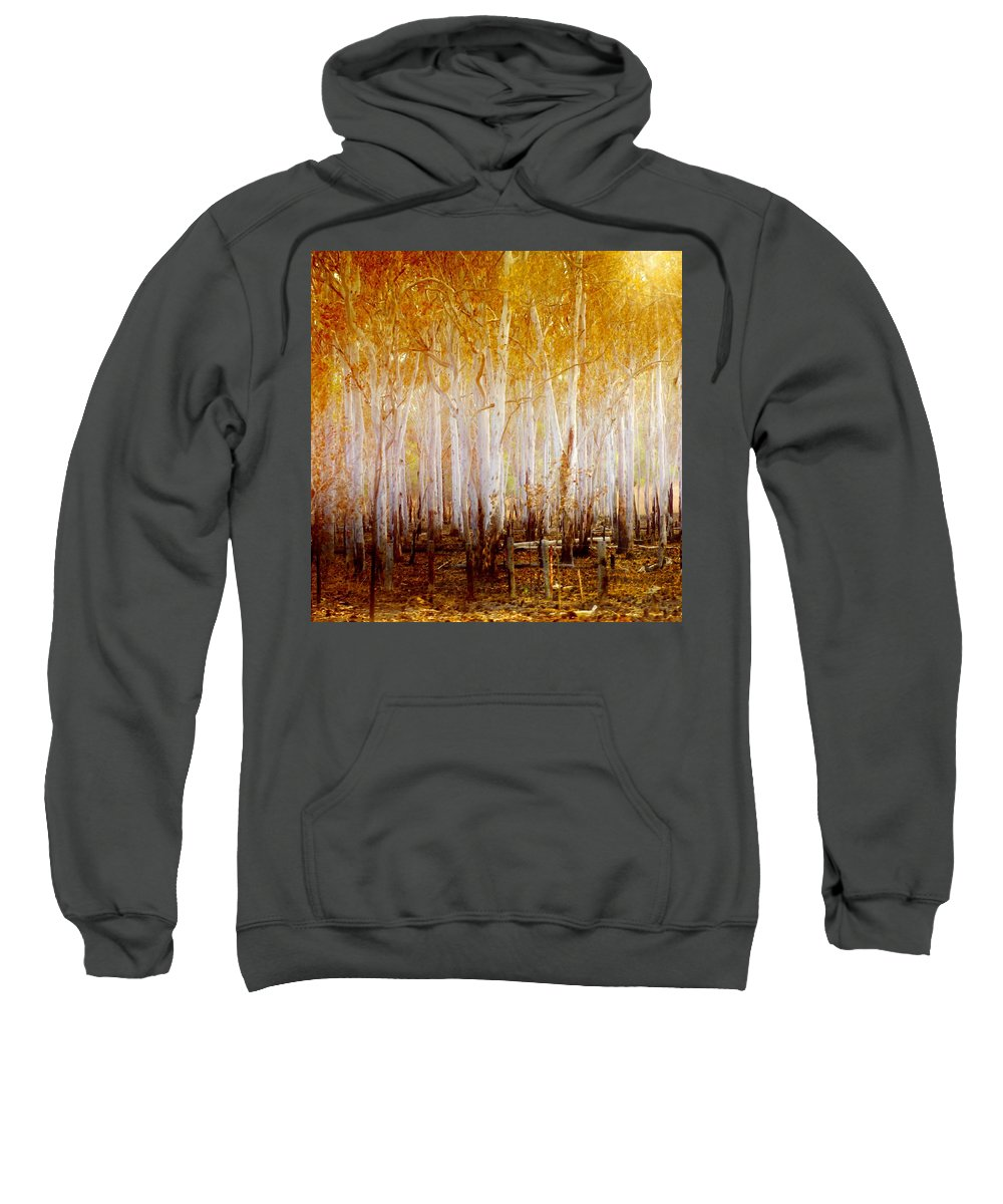Landscapes Sweatshirt featuring the photograph Where The Sun Shines by Holly Kempe
