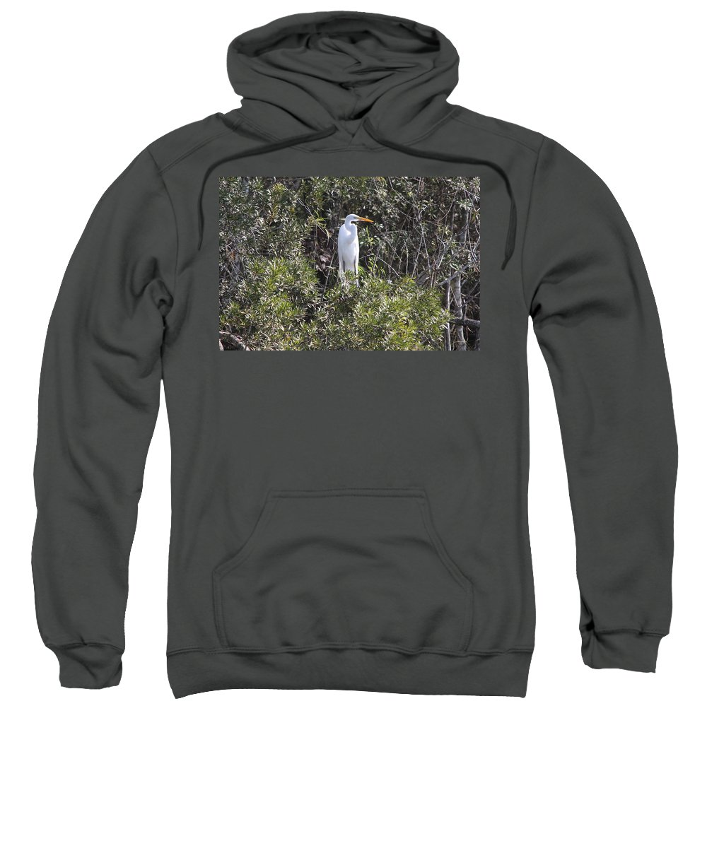 Egret Sweatshirt featuring the photograph White Egret In The Swamp by Christiane Schulze Art And Photography