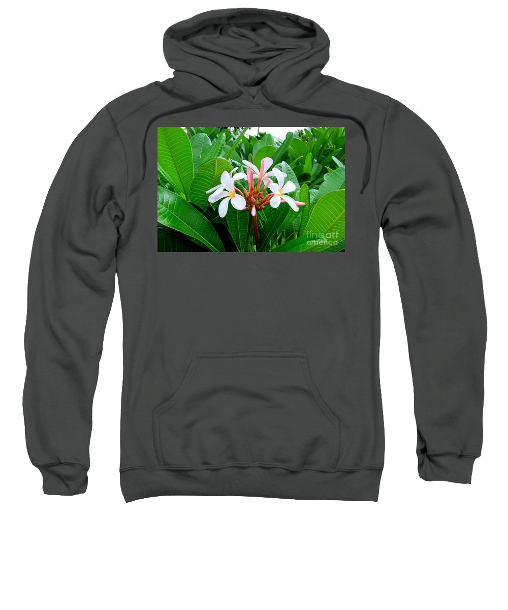 Plumeria Sweatshirt featuring the photograph White Plumeria In Foliage by Mary Deal