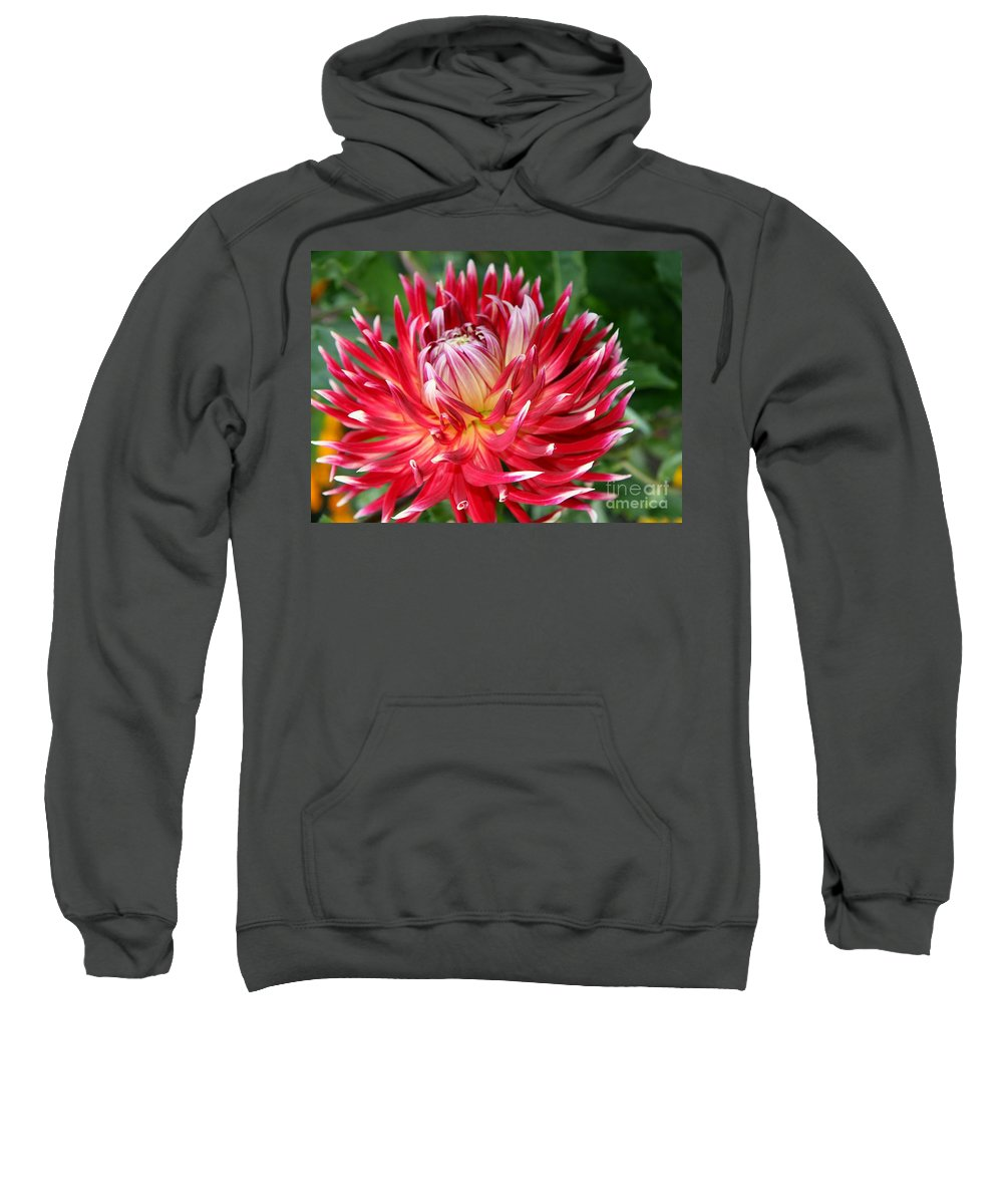 Dahlia Sweatshirt featuring the photograph White Spires by Christiane Schulze Art And Photography