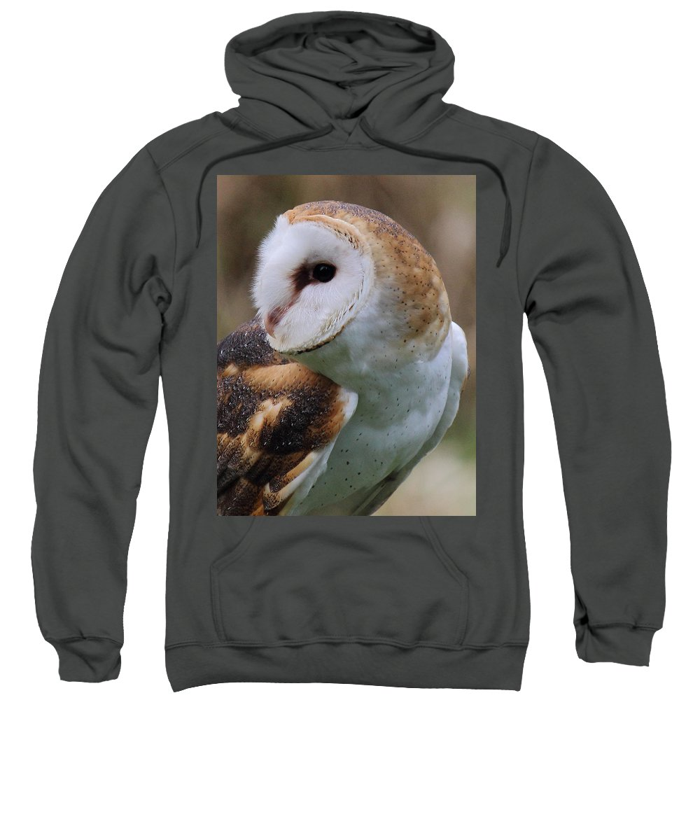 Barn Owl Sweatshirt featuring the photograph Who Said That? by Randy Hall