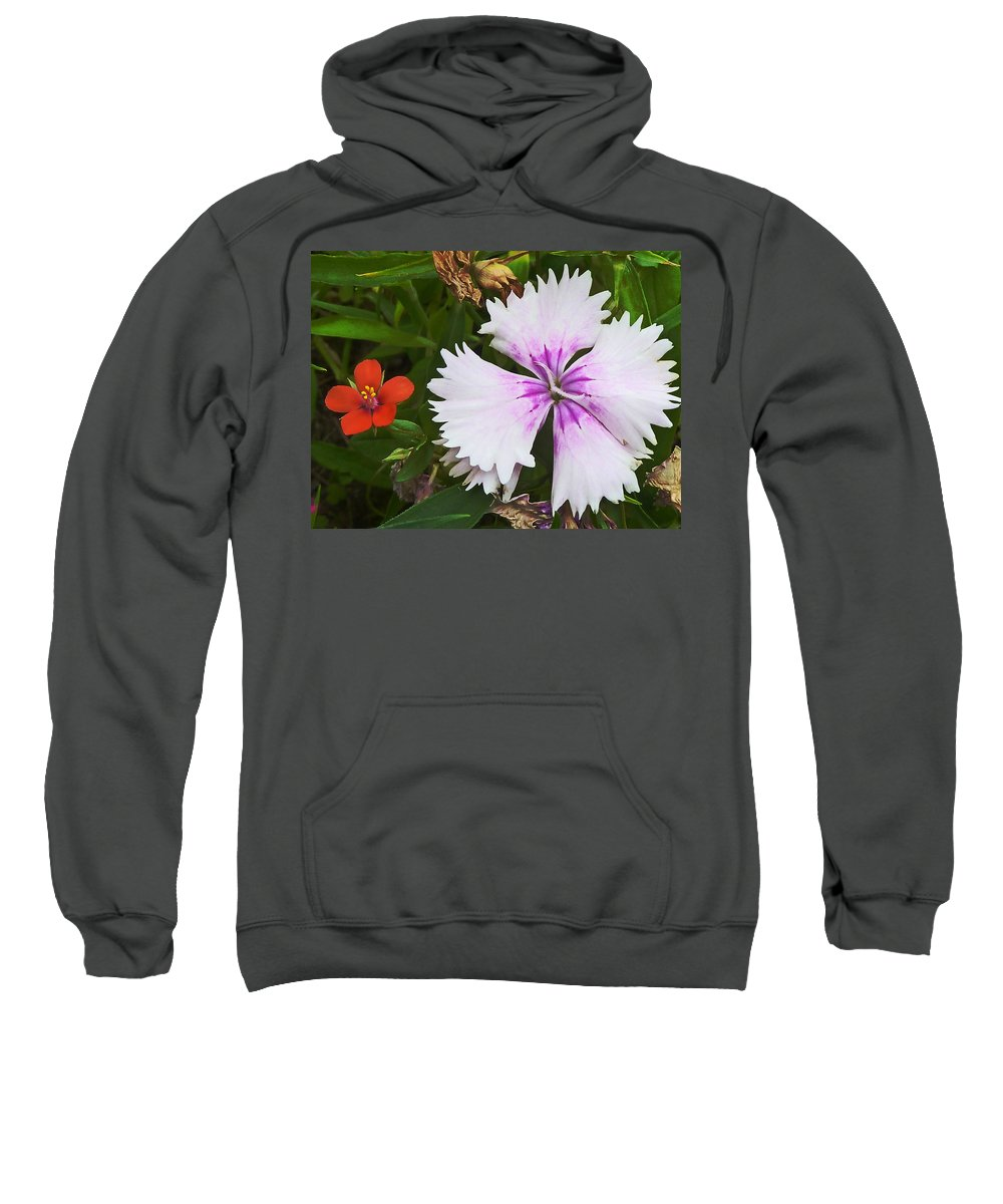 Flower Sweatshirt featuring the photograph Who's The Nicest by Steve Taylor