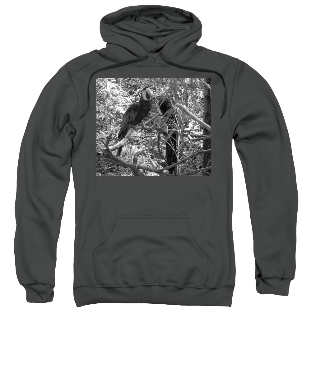 Wild Sweatshirt featuring the photograph Wild Hawaiian Parrot Black And White by Joseph Baril