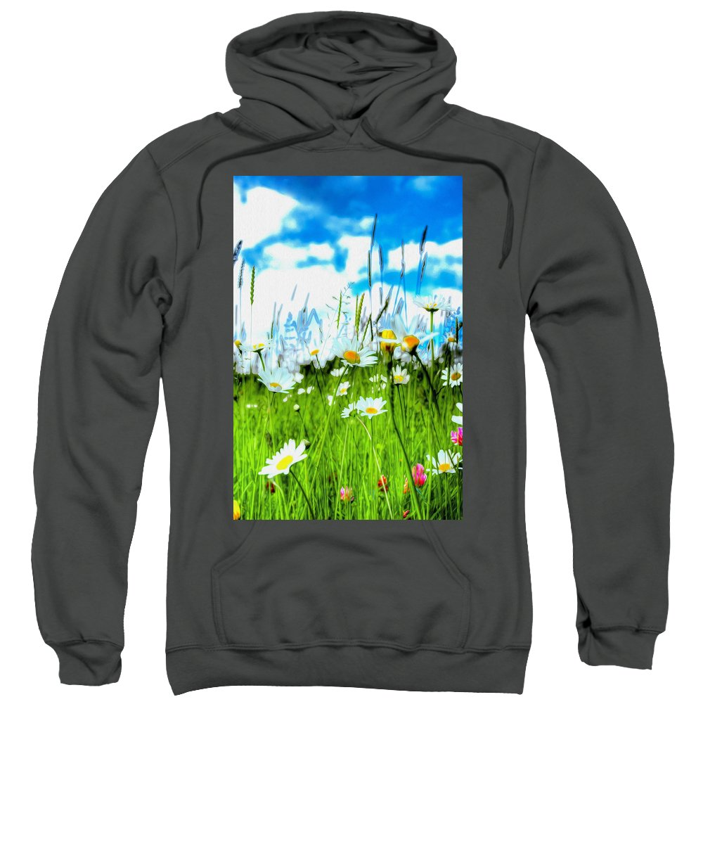 Daisy Sweatshirt featuring the photograph Wild Ones - Daisy Meadow by P Donovan