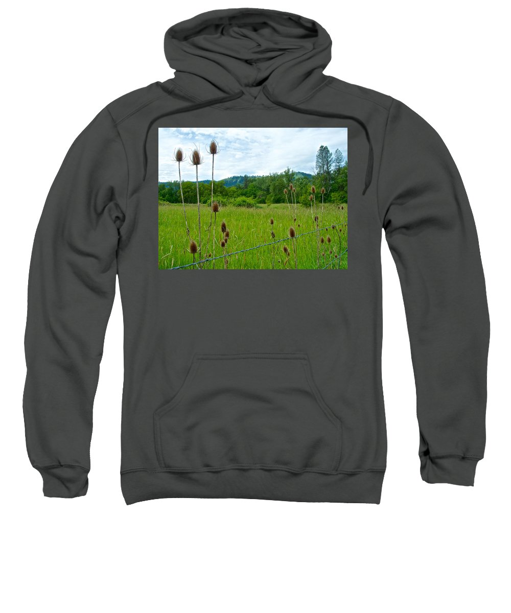 Wild Teasel Sweatshirt featuring the photograph Wild Teasel In Nez Perce National Historical Park-id- by Ruth Hager