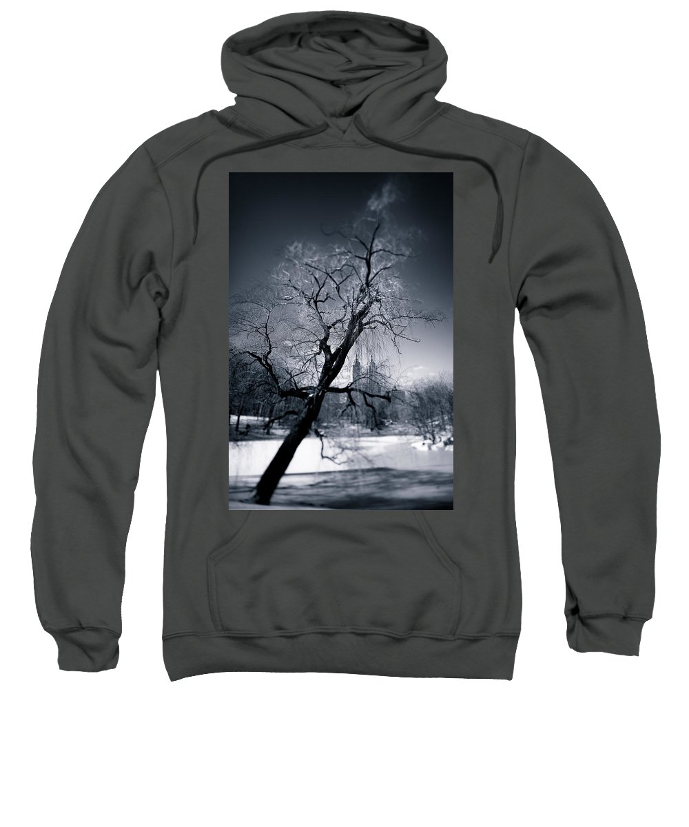 New York Sweatshirt featuring the photograph Winter In Central Park by Dave Bowman