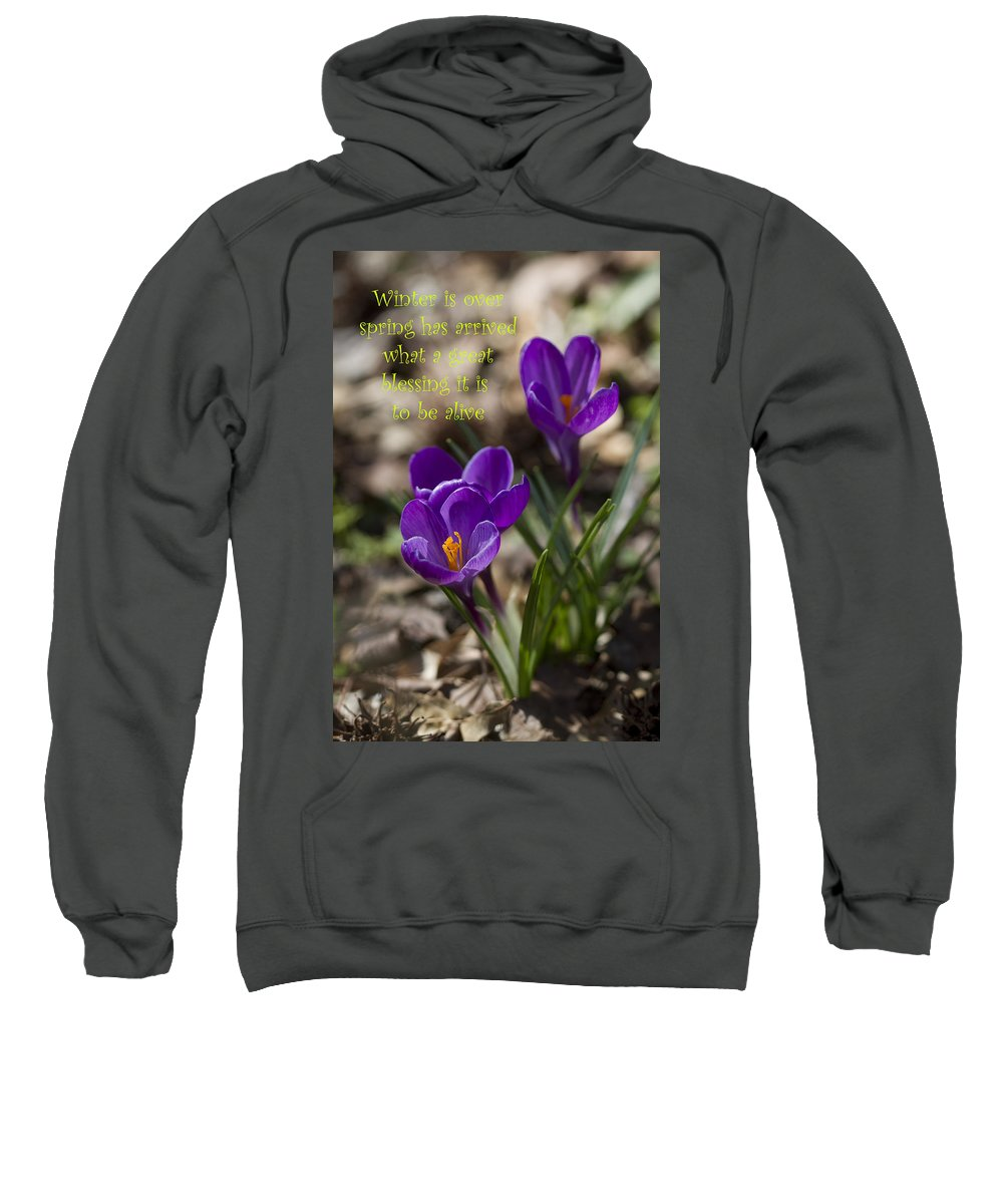 Crocus Sweatshirt featuring the photograph Winter Is Over - Spring Has Arrived by Kathy Clark