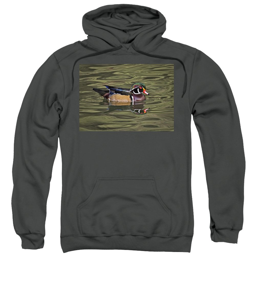 Bird Sweatshirt featuring the photograph Wood Duck Wade Reflection Beauty by Leslie Reagan - Joy To The Wild Photos