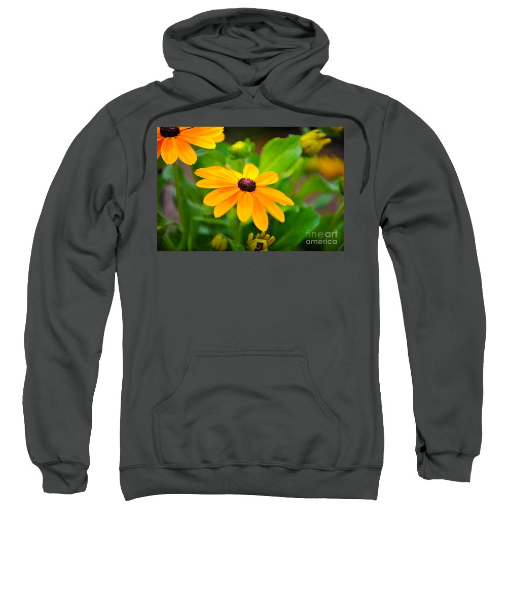 Flower Sweatshirt featuring the photograph Yellow Daisy by Dale Powell