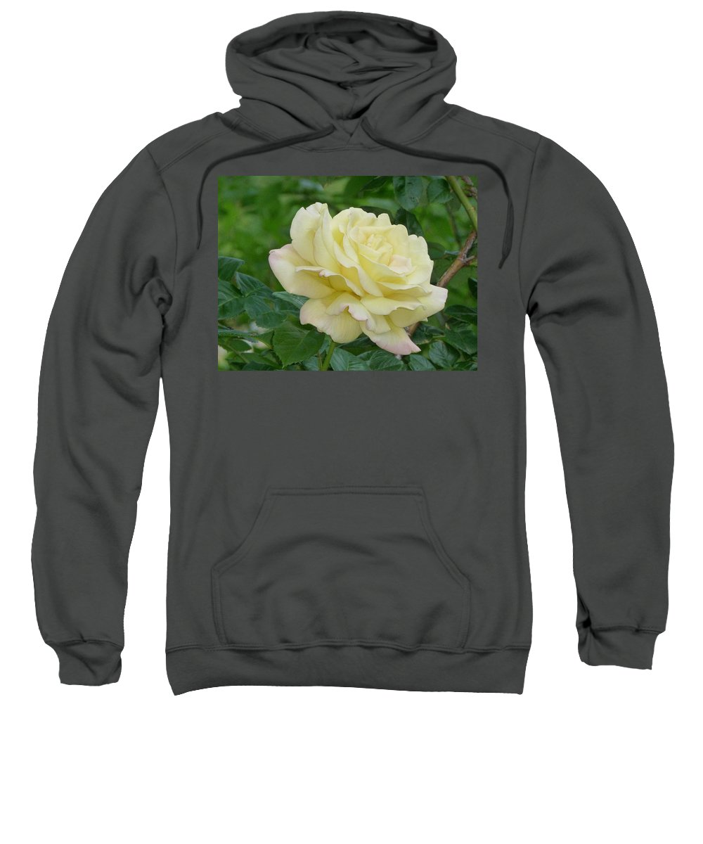 Rose Sweatshirt featuring the photograph Yellow Rose by Karen Capehart