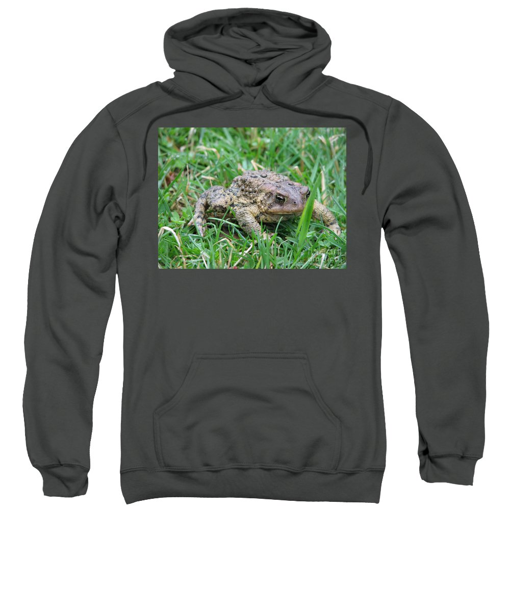 Toad Sweatshirt featuring the photograph You Talkin To Me by Stacey May